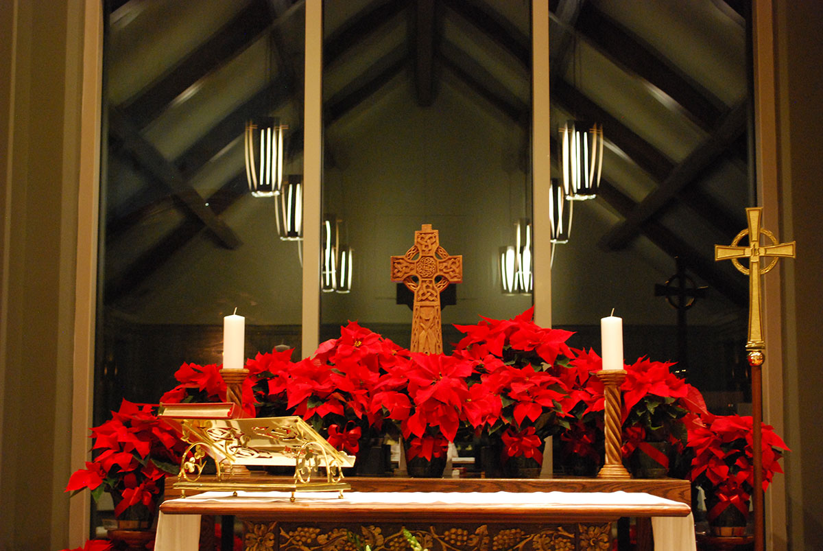 Poinsettias | Church of the Holy Comforter